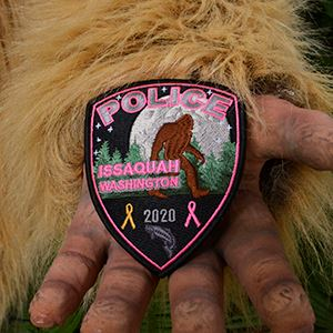 Sasquatch- Pink Patch 300x300
