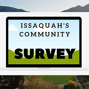 Survey web